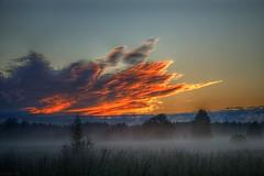 181_sunset_smarde_15.06.2020_02