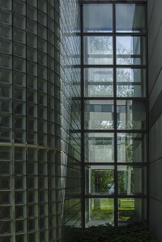 Conway institute windows~HWW