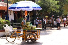 Fresh Young Coconut Vendor