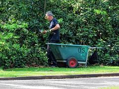 City of London Cemetery Gardener 5