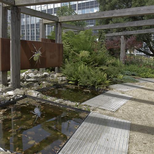 The Evolution garden Belfield