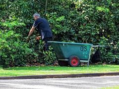 City of London Cemetery Gardener 4