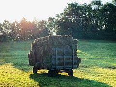 Give me a lift and I'll hay your wagon