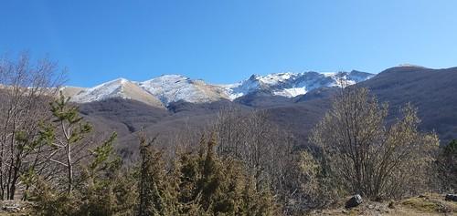 Monti Cantari