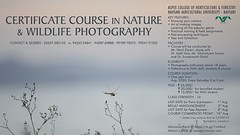 photography course admission 2020 ..