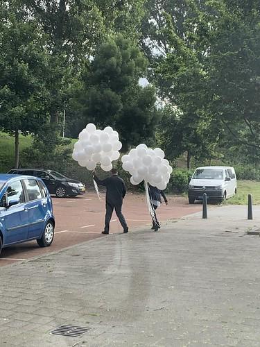 Heliumballonnen Wit Uitvaart Hoogvliet