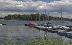 2017-07-01 AT Wien 22 Donaustadt, Untere Alte Donau, Bootsvermietung Schneider