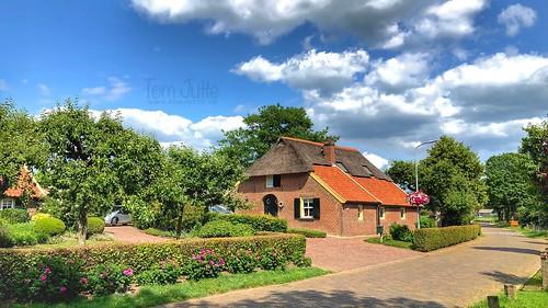 Bronckhorst, Gelderland, Netherlands - 3598