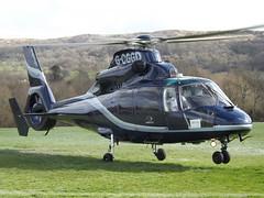 G-CGGD Aérospatiale AS.365N-2 Dauphin Helicopter (Multiflight Ltd)