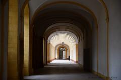 Abbaye de Cluny - Photo of Saint-Gengoux-de-Scissé