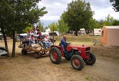 Carraro tractor / Italian camping entertainment