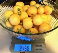 Home Garden Harvest Tomatoes - Garden Peach