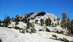 Half Dome Granodiorite (Late Cretaceous, 89-93 Ma; Polly Dome, Yosemite National Park, California, USA) 1