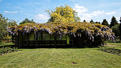 City of London Cemetery Memorial Garden Lawn shelter 1 brighter