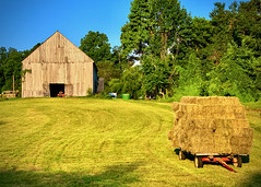 Dan, just think about that barn, with that hay so soft and warm.