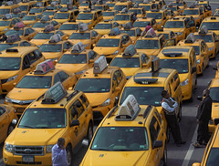 The Cabs of New York