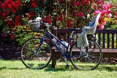 Bicycle City of London Cemetery Memorial Garden