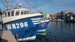 Weymouth Fishing Boats in Harbour (WH296)