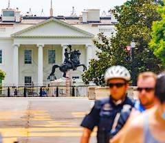 2020.06.23 DC People and Places, Washington, DC USA 175 44019