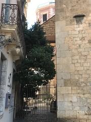Photo Saint-Estève