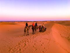 Morzega, Sahara desert, Morocco, 摩洛哥