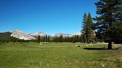 Tuolumne Meadows (Yosemite National Park, Sierra Nevada Mountains, California, USA) 3