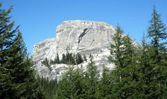 Cathedral Peak Granodiorite (Late Cretaceous, 86-88 Ma; Daff Dome, Yosemite National Park, California, USA) 2