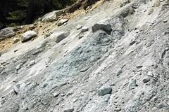 Alpine glacial till (Pleistocene; near Dana Fork, Yosemite National Park, California, USA) 6