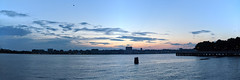 Hudson River Panorama With Seagull