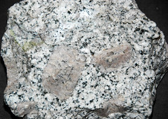 Cathedral Peak Granodiorite (Late Cretaceous, 86-88 Ma; Yosemite National Park, California, USA)