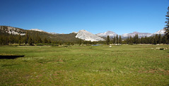 Tuolumne Meadows (Yosemite National Park, Sierra Nevada Mountains, California, USA) 2