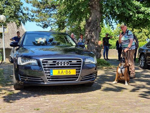 Boxer Lotje naast de Audi met kenteken AA-86 van Koning Willem-Alexander in Borger 24-06-2020