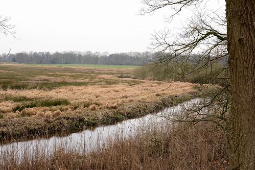 Drenthe in de winter.