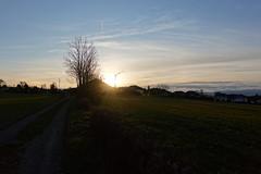 Sunset @ Quintal