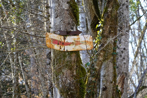 Rusty direction sign @ Forest @ Semnoz