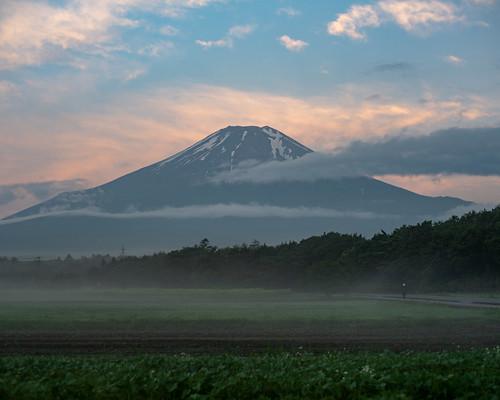 2020 June Fuji