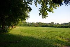 24.6.20 Platt Fields Park 4