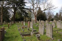 Across gravestones at City of London Cemetery and Crematorium 01