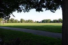 24.6.20 Fog Lane Park 02