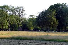 24.6.20 Platt Fields Park 1