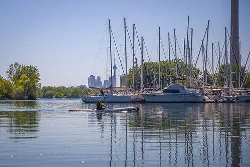 Paddling Along In Ashbridges Bay Toronto