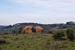 Cerro dos Abreu - 24-06-2020