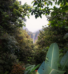 Chutes du Carbet, Basse-Terre, Guadeloupe