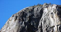 El Capitan Granite (mid-Cretaceous, 103 Ma; El Capitan, Yosemite Valley, Sierra Nevada Mountains, California, USA) 7
