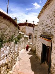 བོད་པ་ The monk - Drepung Monastery, Lhasa, Tibet 哲蚌寺