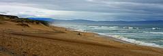 Monterey Bay - 1128
