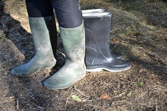 367 -- Testing NEW Wellies to replace my wornout & damaged dunlop boots