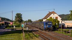 230620 | SNCF 232, 236 + 67591 | TER 831834 | Wisches. - Photo of Waldersbach