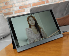 Carryvision Portable LCD Moniter