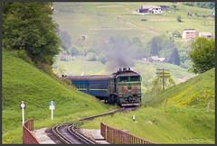 der Zug kommt...